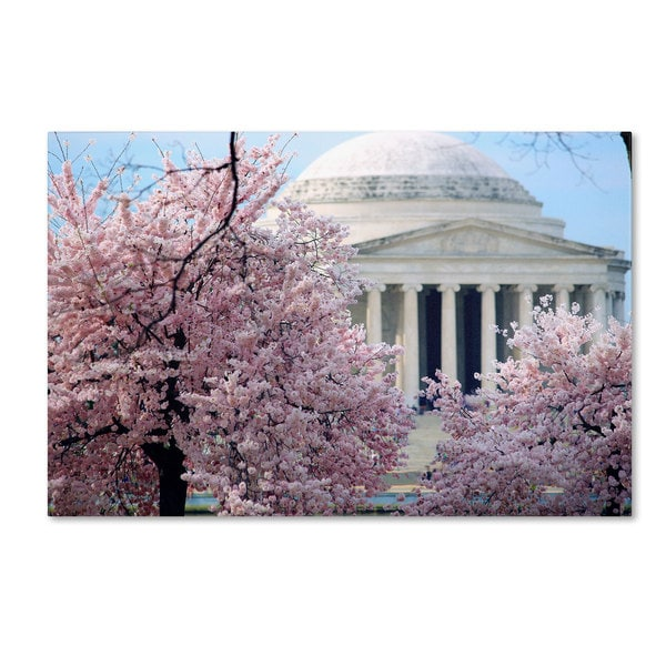 CATeyes 'Cherry Blossoms 2014-7' Canvas Art