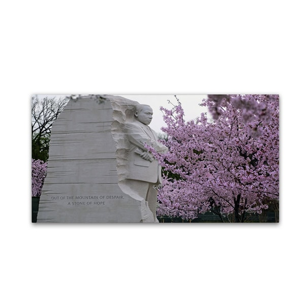 CATeyes 'Cherry Blossoms 2014-5' Canvas Art