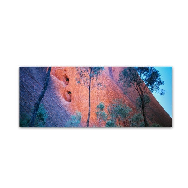 David Evans 'Uluru Up Close' Canvas Art