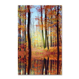 Philippe Sainte-Laudy 'Fall Mirror' Canvas Art