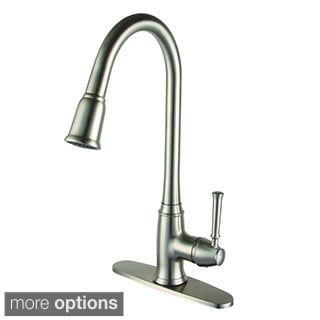 Yosemite Home Decor Single Handle Pull-out Kitchen Faucet with 2-foot Extended Hose