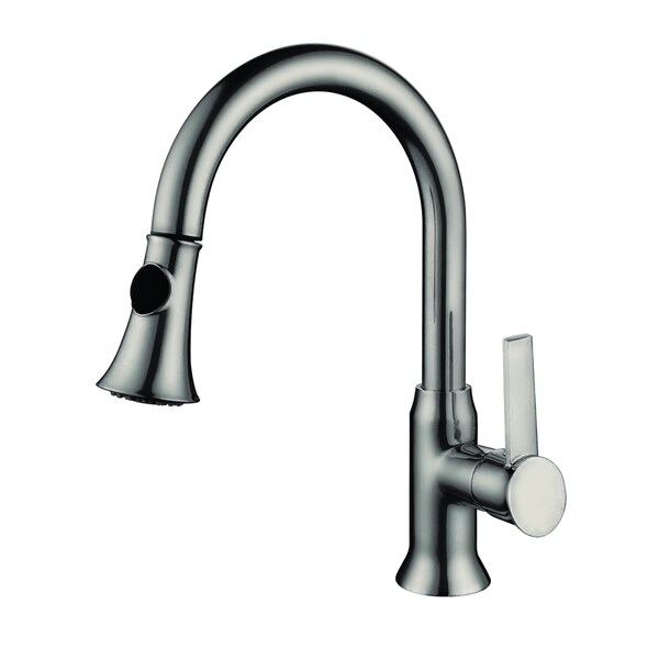 Single Handle Pull Out Kitchen Faucet With 2 Foot Flexible Hose 16714871