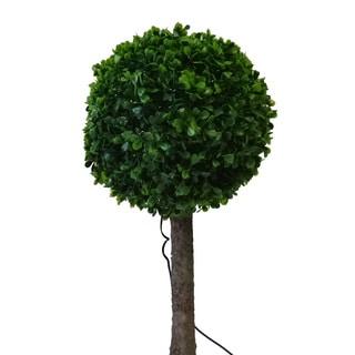 Tricod Solar Topiary 10 LED Light