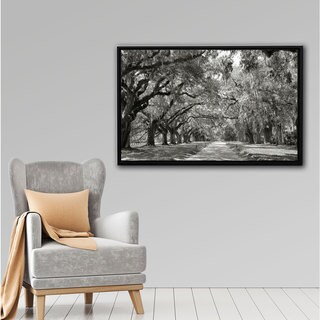 Steve Ainsworth 'Live Oak Avenue' Floater-framed Gallery-wrapped Canvas