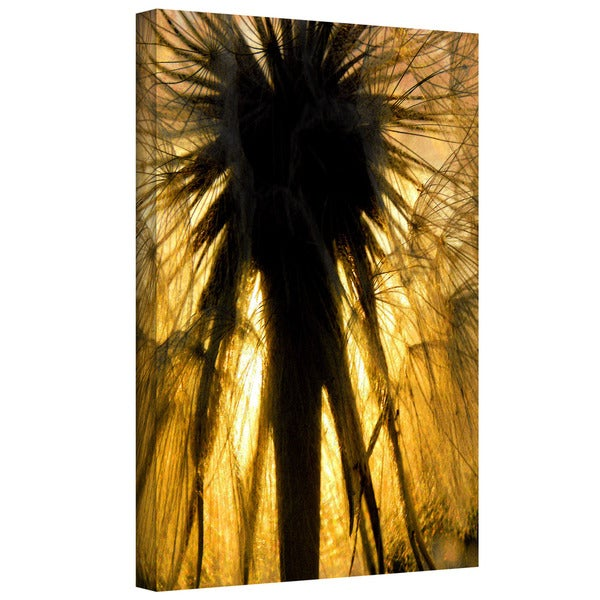 Dean Uhlinger 'Heart of a Lion-Dandelion' Gallery-wrapped Canvas