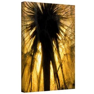 Dean Uhlinger 'Heart of a Lion-Dandelion' Gallery-wrapped Canvas
