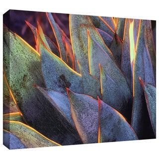 Dean Uhlinger 'Sun Succulent' Gallery-wrapped Canvas