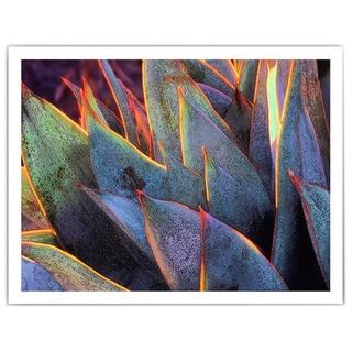 Dean Uhlinger 'Sun Succulent' Unwrapped Canvas