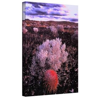 Dean Uhlinger 'Mojave Desert Dusk' Gallery-wrapped Canvas