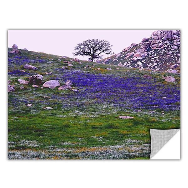 Dean Uhlinger 'Sierra Foothills Spring' Removable Wall Art - Multi 14185062