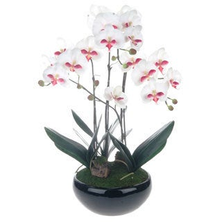 White Artificial Silk Phalaenopsis Orchid Centerpiece with Black Ceramic Base