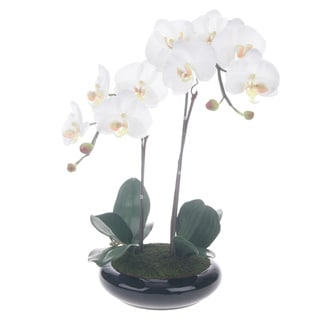 White/ Yellow Artificial Silk Phalaenopsis Orchid Centerpiece with Black Ceramic Base