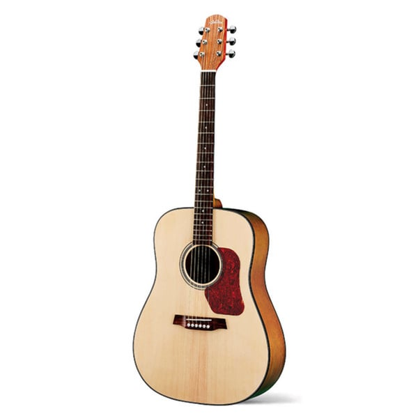 Walden D550 Dreadnought Acoustic Guitar