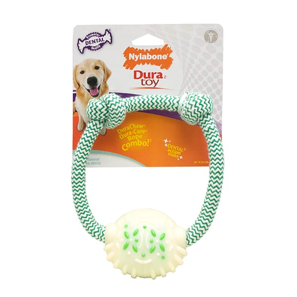 Nylabone 7-inch Mint Dental Rope Ring Dog Toy