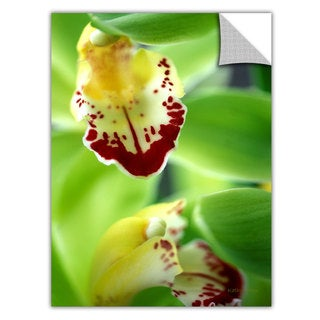 Kathy Yates 'Cymbidium Sea Foam Emerald Orchid' Removable Wall Art