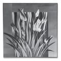 Silver Tulips' Medium Metal Wall Art 24 x 24 in