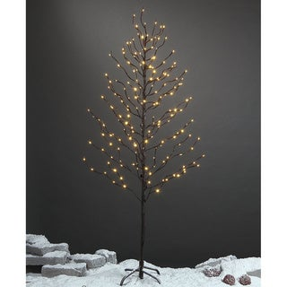 Lightshare 5-foot 200-light Warm White LED Star Light Tree with Free Gift: 10-light LED Star Twinkling (RGB) Decoration Light