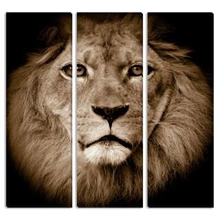 Lion Triptych Art