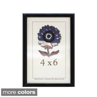 Metal II Picture Frame (4 x 6 inches)