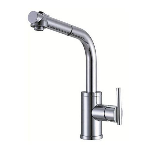 Danze Single-handle Kit Parma Pull-out Side Mount Handle Polished Chrome Faucet