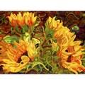 Mandy Budan 'Four Sunflowers' Unframed Giclee Print Art