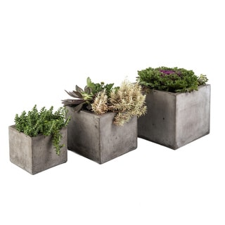 Set of 3 Eco-Concrete Cubo Planters (Vietnam)