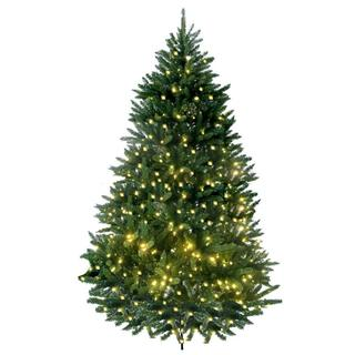 7-foot Prelit Artificial Lakewood Fir Tree with 600 LED Warm Lights and Metal Stand