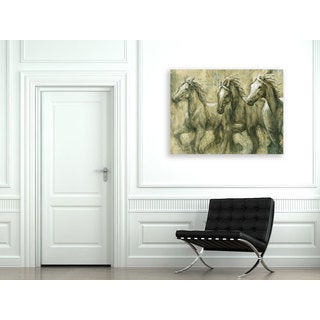 Portfolio 'Desert Kings' Large Printed Canvas Wall Art