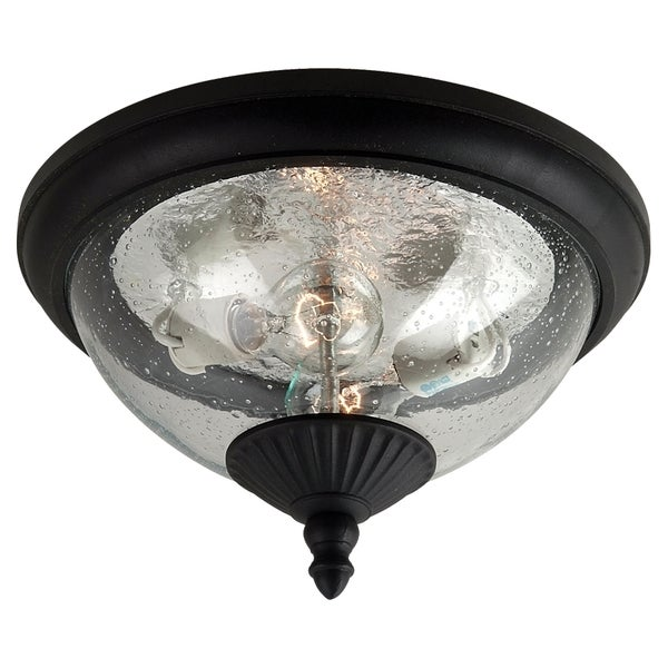 Two-light Outdoor Close to Ceiling Fixture