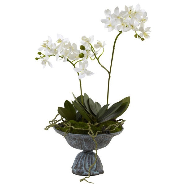 Mini Dendrobium with Metal Vase