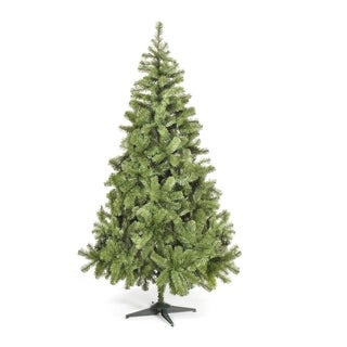 82.7-inch Colorado Spruce Green