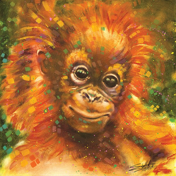 Stephen Fishwick 'Baby Orangutan' Gallery-wrapped Canvas Print