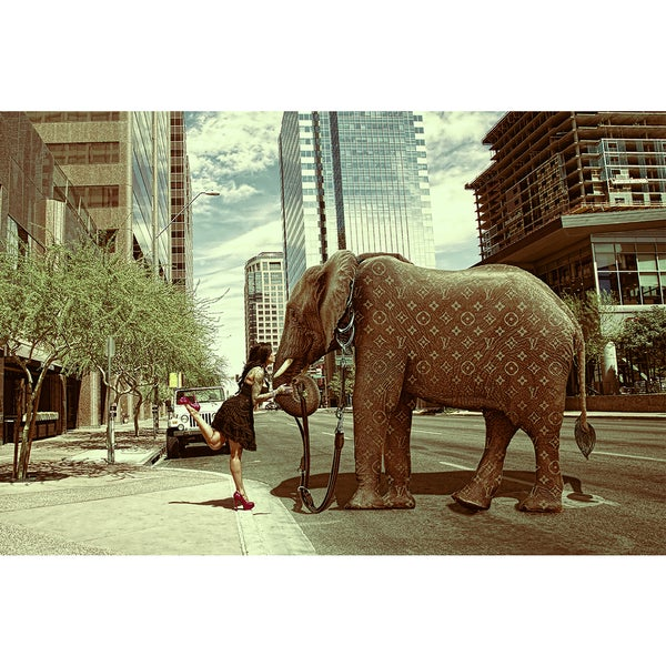 Daveed Benito 'Glamour Pet Elephant' Gallery-wrapped Canvas Print