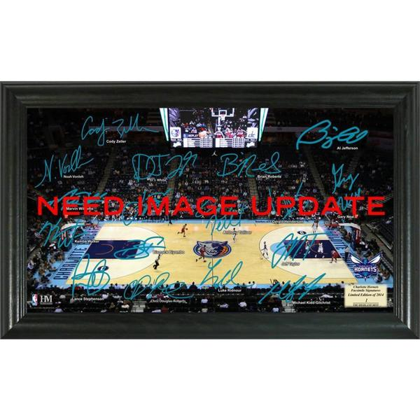 Charlotte Hornets Signature Court
