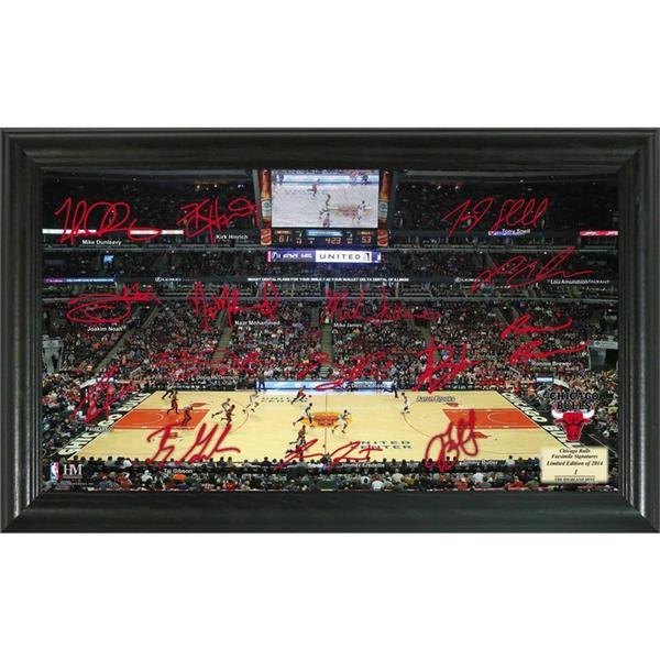 Chicago Bulls Signature Court