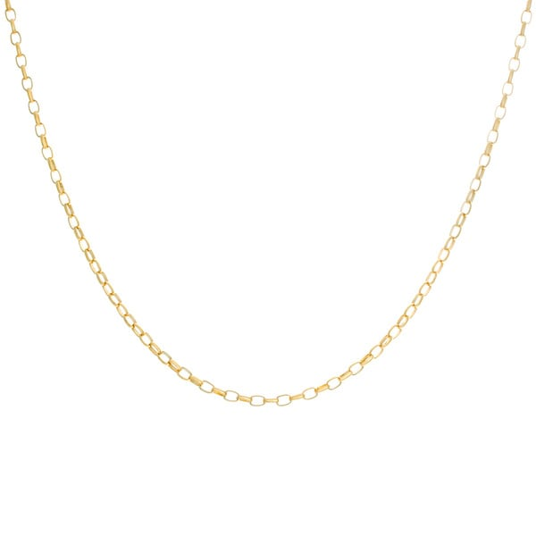 Sterling Essentials Yellow Goldplated Silver Oval Rolo Link Chain Necklace (2.5 mm)