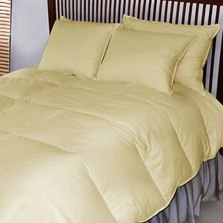 Eileen West Extra-warmth French Down Blend Comforter
