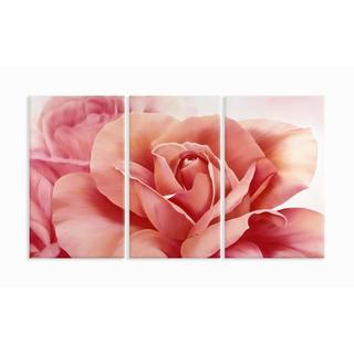 Pretty In Pink Flower 33X17 Triptych Art