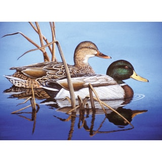"Paint By Number Kit 15.375""X11.25""-Blue Water Mallards"
