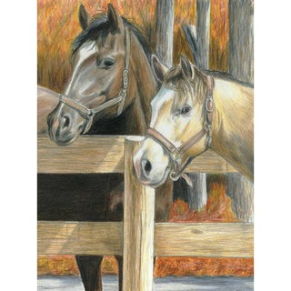 """Color Pencil By Number Kit 8.75""""X11.75""""-Buck's Pal"""
