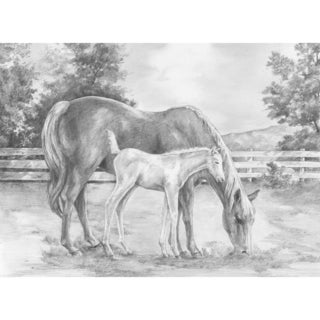 "Sketching Made Easy Large Kit 16""X12.75""-Horse & Calf"