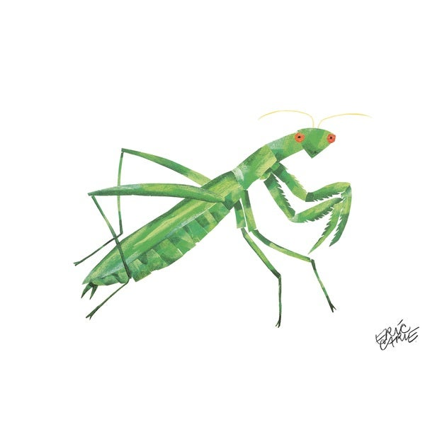 Eric Carle The Very Quiet Cricket Character Art Mantis Canvas Print