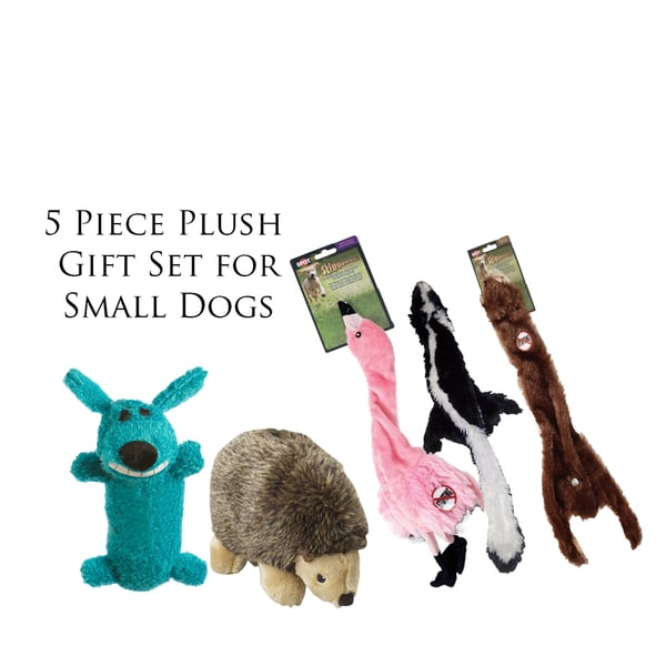Ethical Pet Products 5-piece Assorted Plush Dog Toy Gift Set