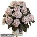 Hydrangea with Large Floral Planter