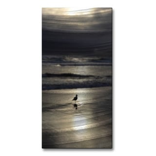 Terra Holcomb 'On My Own' Metal Wall Art Decor