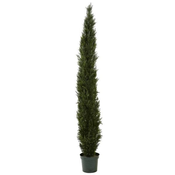 Mini Cedar Pine Tree