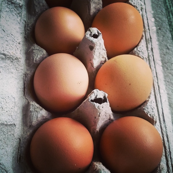 Copia Farm Fresh Local Eggs (5 Dozen)