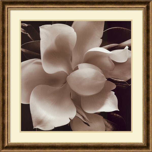 Christine Elizabeth 'The Unfolding IV' Framed Art Print
