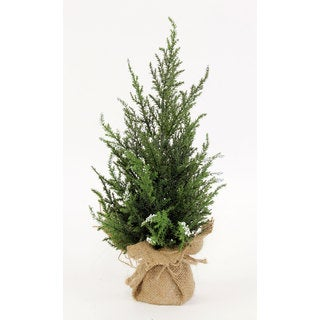 Sage & Co 5-inch x 5-inch x 14-inch Mini Cedar Tree In Burlap Base (Pack of 6)