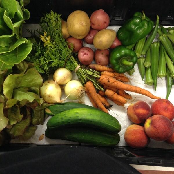 Denton Creek Farm Local Seasonal Produce Bundle (Local Delivery)